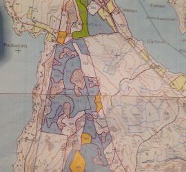 Parkinniemen alue kaupungin metsäsuunnitelmassa. Siniset ovat avohakkuualoja.